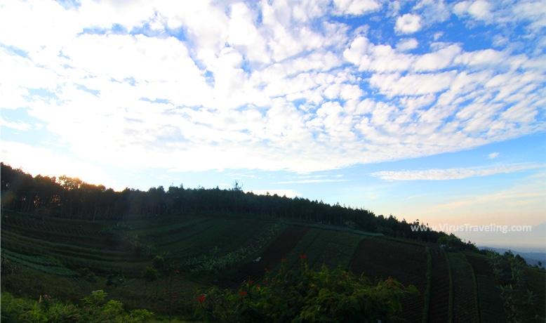 Pemandangan dari Bukit Moko Bandung