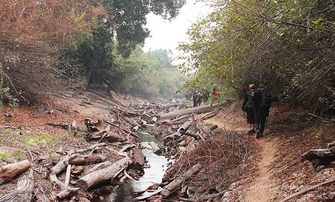 sungai-kruing-kalimantan