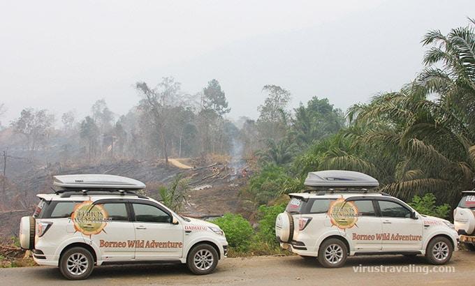 terios-7-wonders-kebakaran-hutan-kalimantan