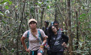trekking-hutan-tn-sebangau-kalimantan