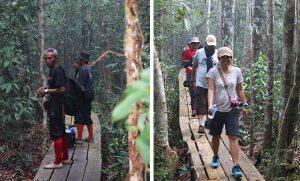 trekking-taman-nasional-sebangau