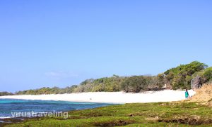 pantai-oinian-pulau-semau-2