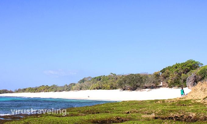 Biru Pantai Oinian Pulau Semau