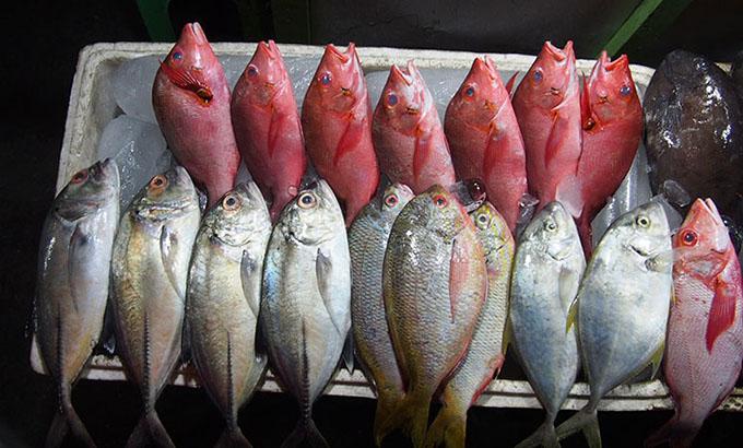 seafood-kupang
